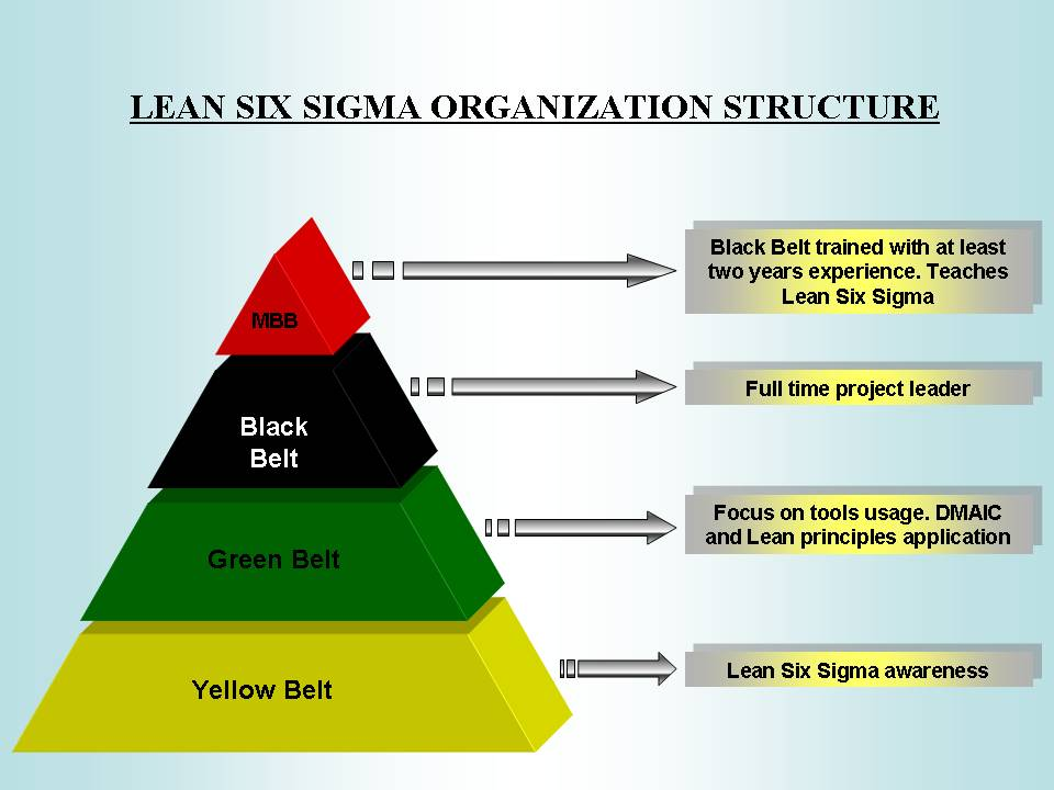 six sigma black belt project template - six sigma organization theblogspotblog